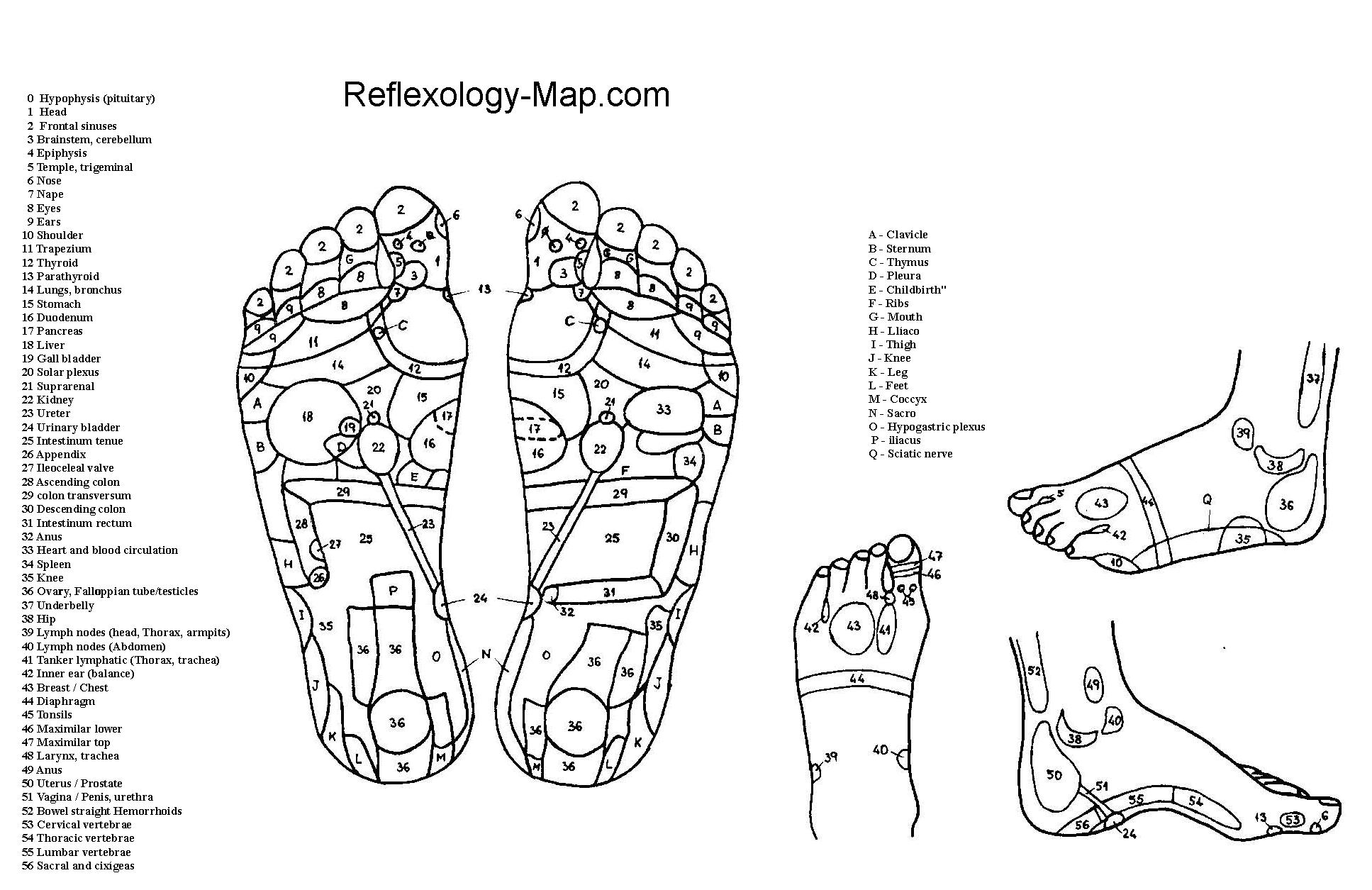 foot reflexology massage wollongong illawarra remedial